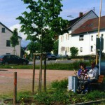 Scheuern - Gerichtslinde Ortsmitte