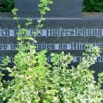 Überroth-Niederhofen - Kreuz Nr 11 Inschrift
